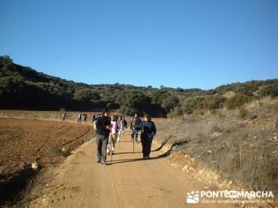 Cañón del Río Dulce y Sigüenza; excursiones en la sierra de madrid; excursiones madrid sierra